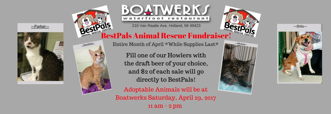 Best Pals Animal Rescue Fundraiser
